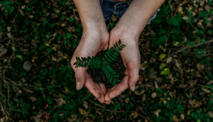 Nu lanseras hållbart lågvolatilitets-index för globala aktier